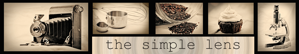 the simple lens header image