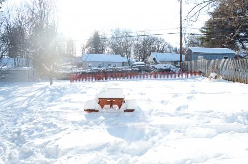 backyard_with_snow