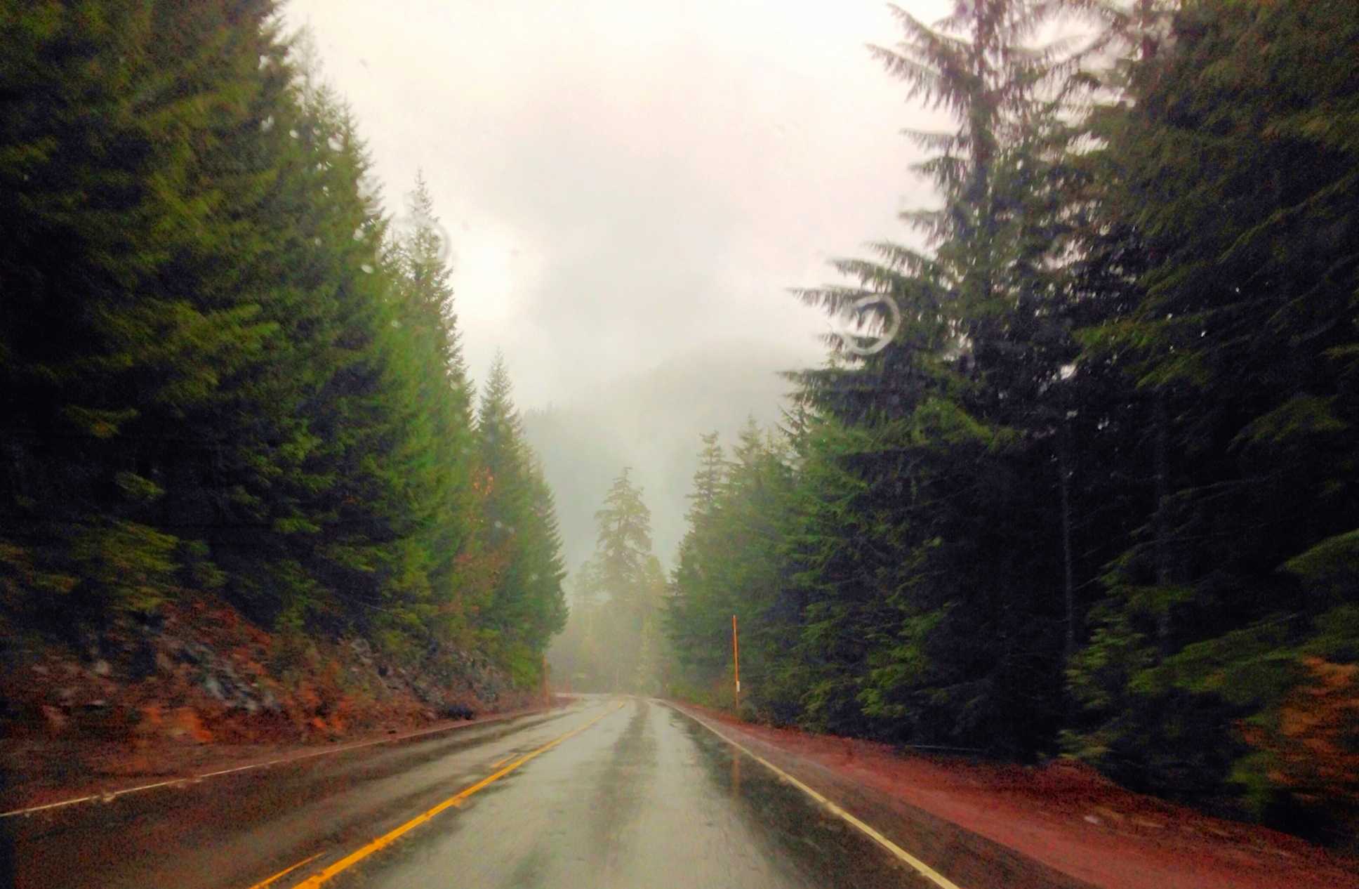 Adventures in Oregon: Willamette National Forest