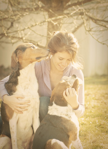 lovemydogs