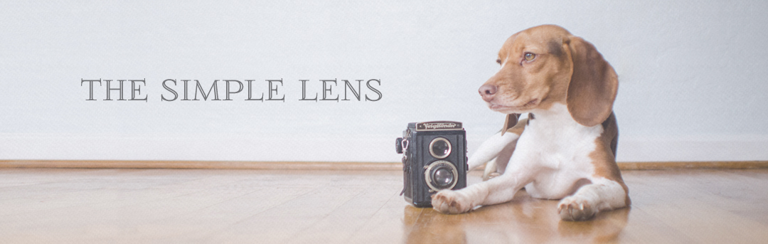 the simple lens
