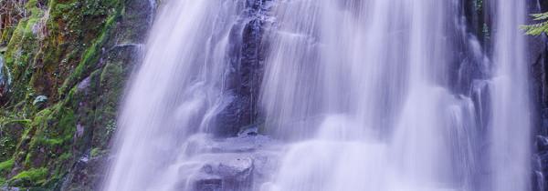 Adventures in Oregon: Kentucky Falls
