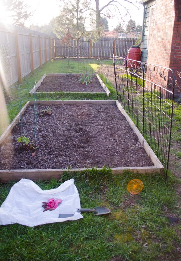 gardening-4
