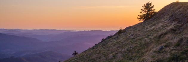 Sunset Picnic at Mary's Peak