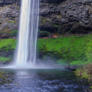 Adventures in Oregon: Silver Falls State Park