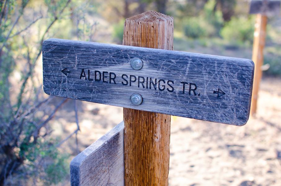 aldersprings-20