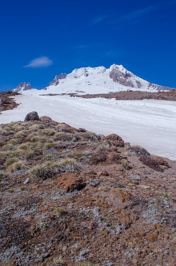 mounthood-14