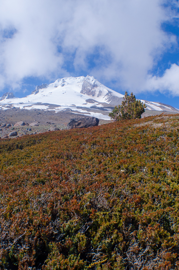 mounthood-26