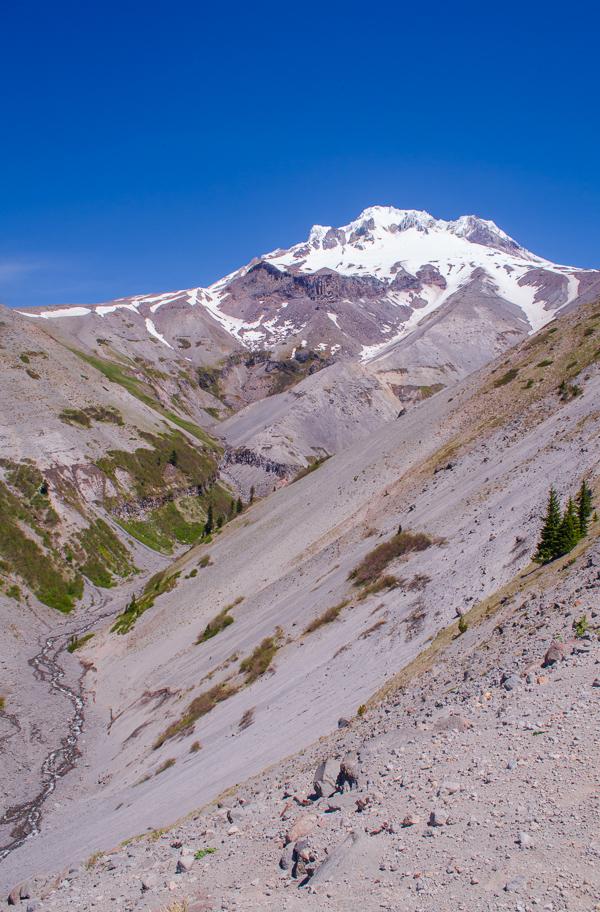 Mount Hood over Zigzag Canyon