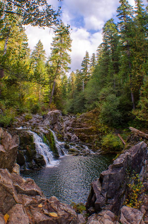 Sawmill Falls at Opal Creek
